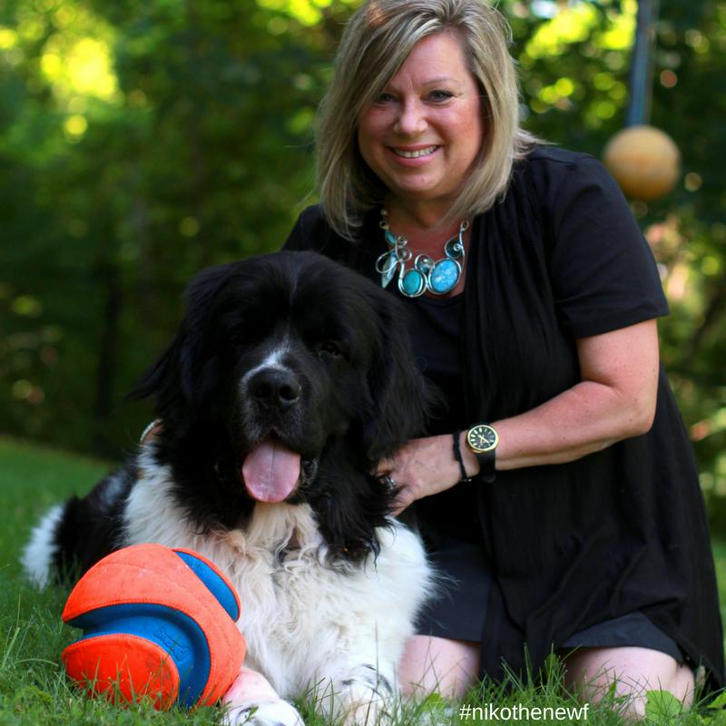Suzy Rosenstein, MA, Master Certified Life Coach