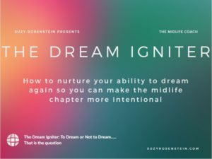 Dream Igniter - Suzy Rosenstein