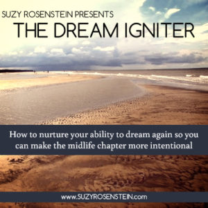 The Dream Igniter - Suzy Rosentstein
