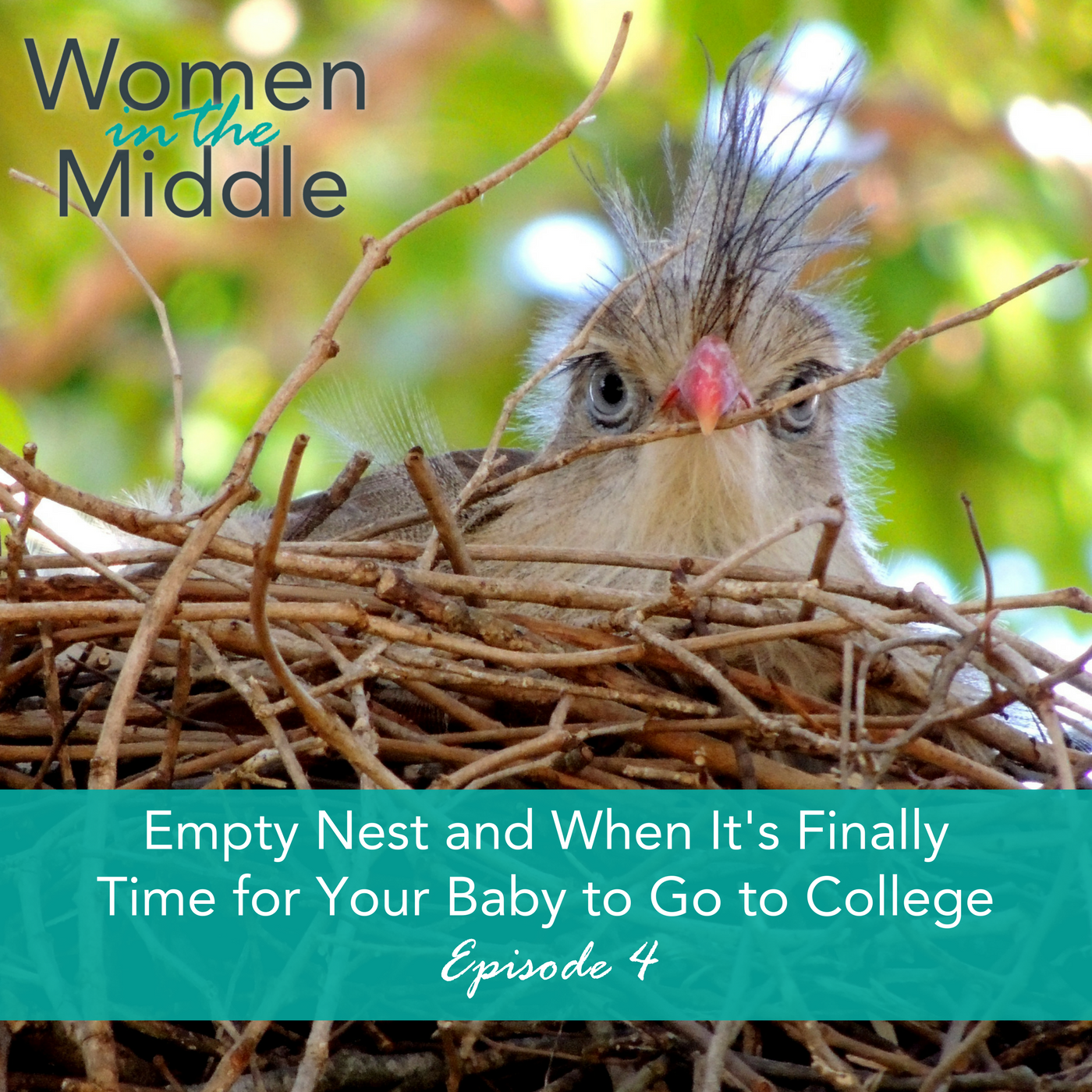 midlife women podcast